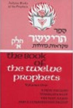 The Book of The Twelve Prophets: Volume 1