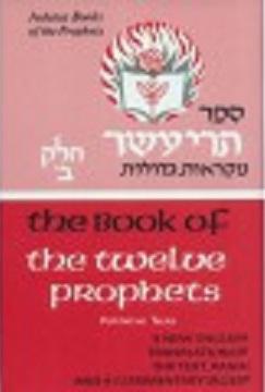 The Book of The Twelve Prophets: Volume 2